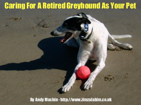 Product picture Caring For A Retired Greyhound As Your Pet